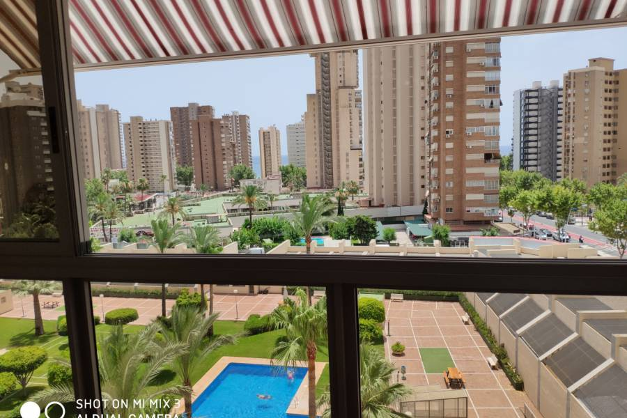 Sale - Apartment/Flat - Benidorm - Levante